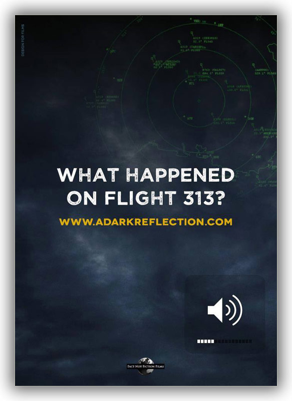 what-happened-on-flight-313